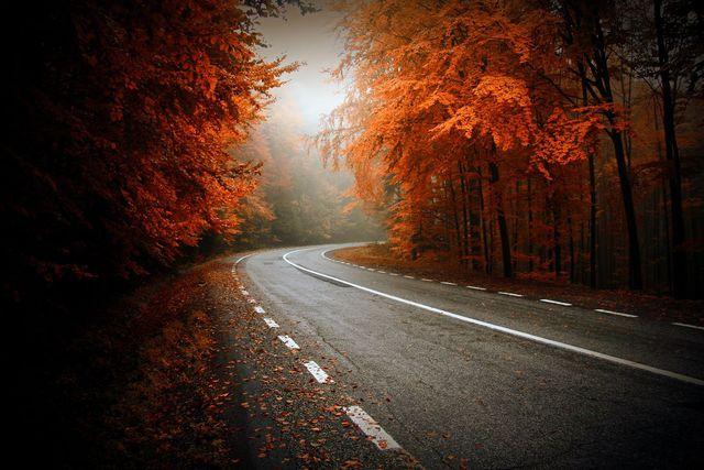 couleurs-automne-05