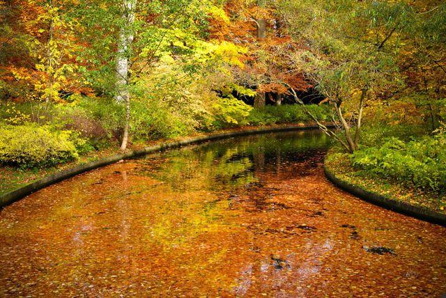 couleurs-automne-20