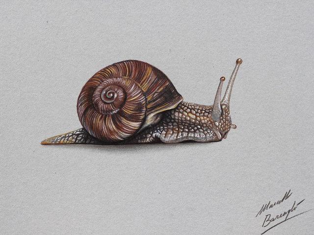 dessins-realistes-marcello-barenghi-35