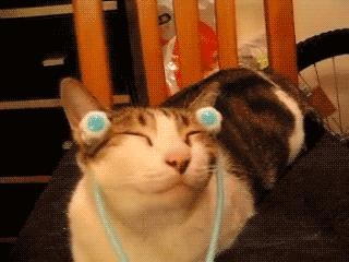 chat-adore-massages