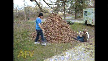 balancoire-tas-feuilles-mortes