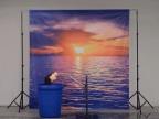 tete-mannequin-coucher-soleil