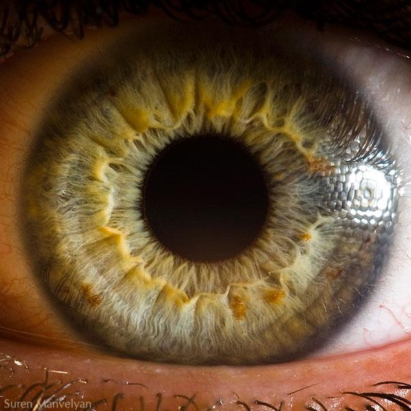 oeil-humain-gros-plan-08