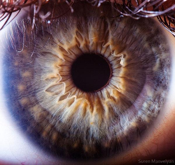 oeil-humain-gros-plan-13