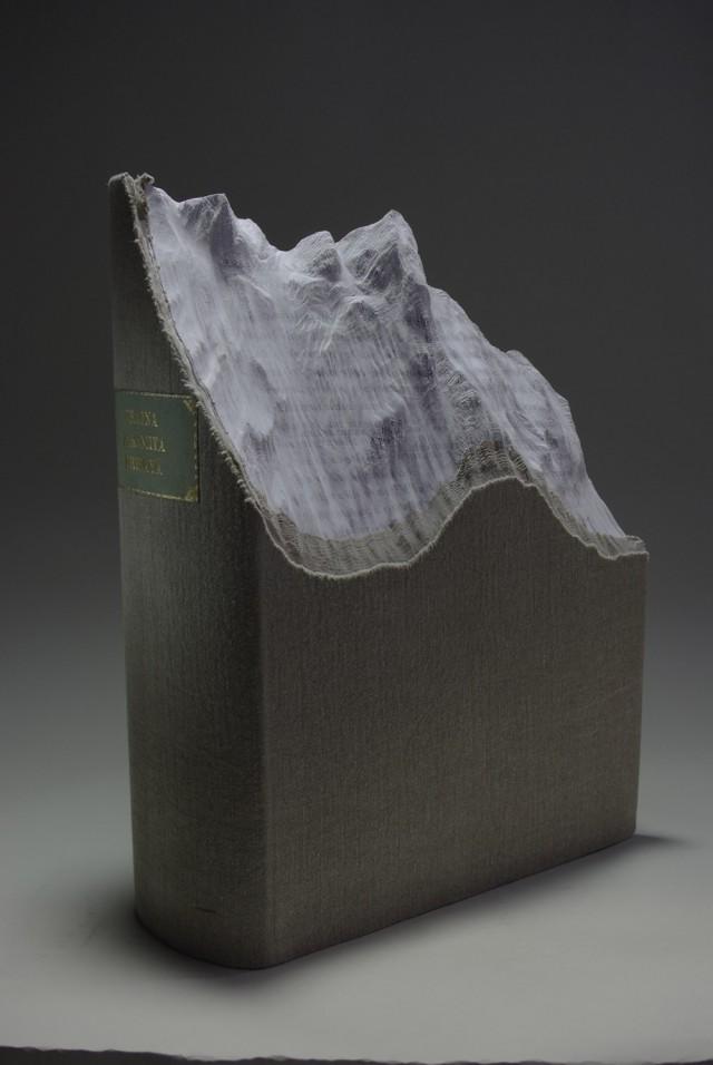 paysages-sculptes-livres-11
