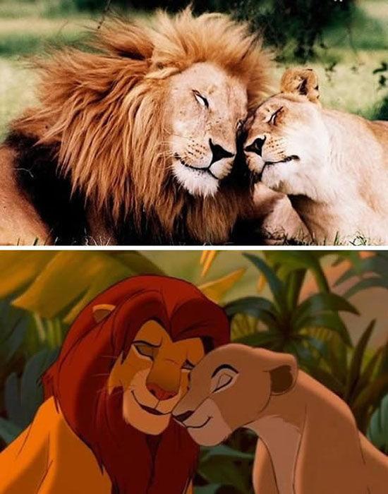 sosie-mufasa-sarabi-roi-lion