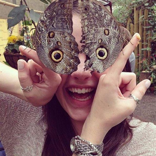 yeux-papillon