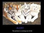 limprimante-court-encre-tigres