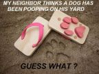 faire-caca-chez-les-voisins