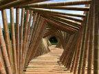 joli-tunnel-bambous