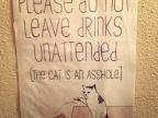 chat-est-connard
