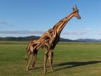 girafe-bois