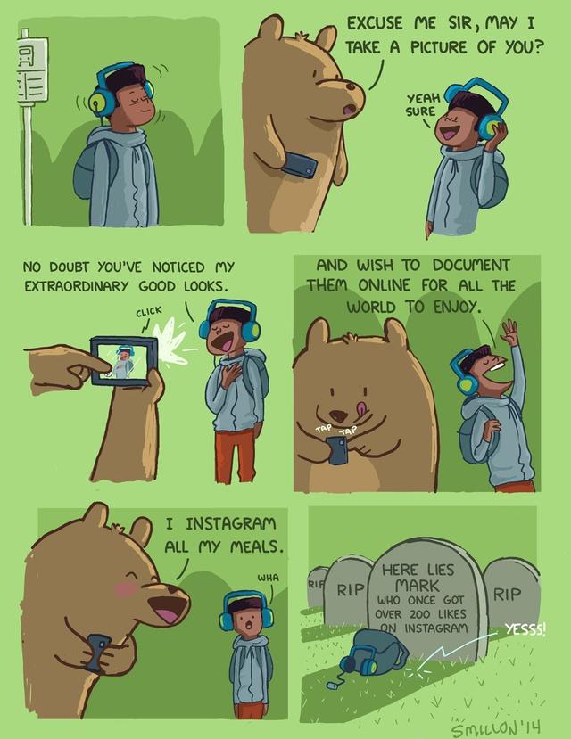ours-prend-une-photo-pour-instagram