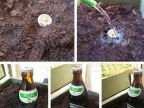 arroser-bouchon-biere