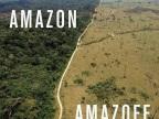 amazon-amazoff