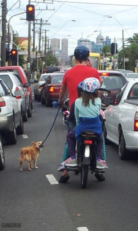 une-famille-moto-chien--pied