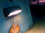 une-souris-qui-lit-sous-une-lampe