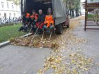feuilles-mortes-travail-equipe