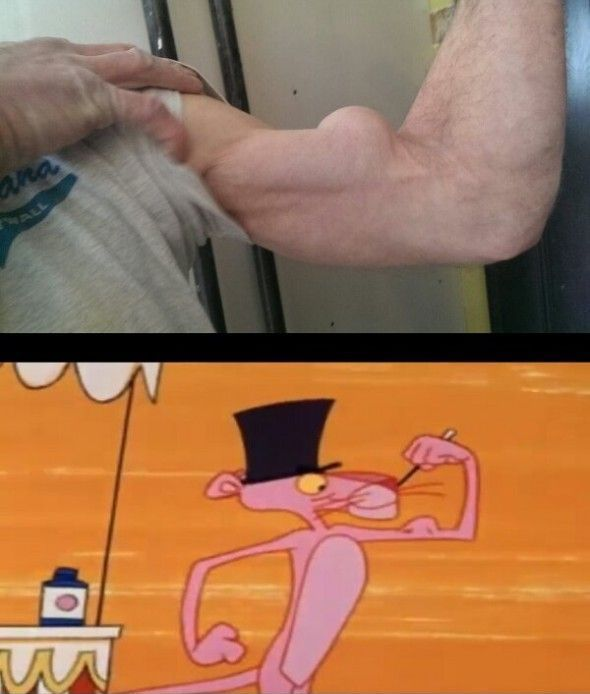 muscle-panthere-rose