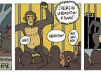 revolution-des-singes