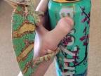 cameleon-couleurs-canette-arizona