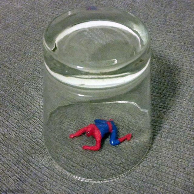 attrape-araignee-quelquun-peut-tuer