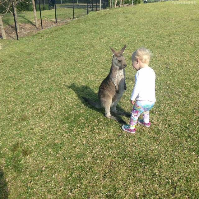 bebe-kangourou-bebe-humain