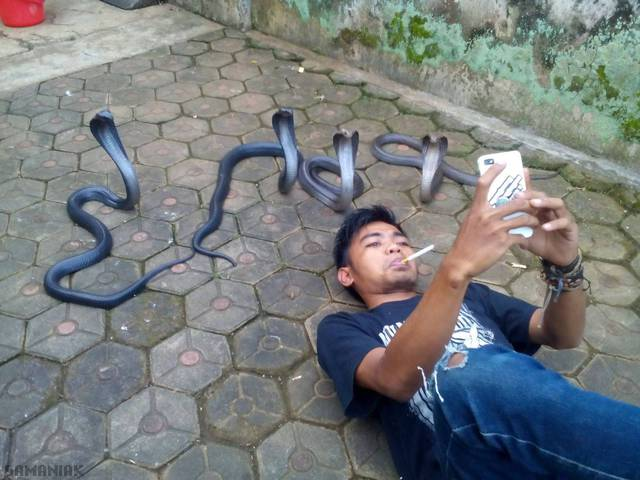 selfie-avec-serpents