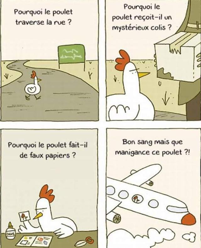 mais-pourquoi-poulet