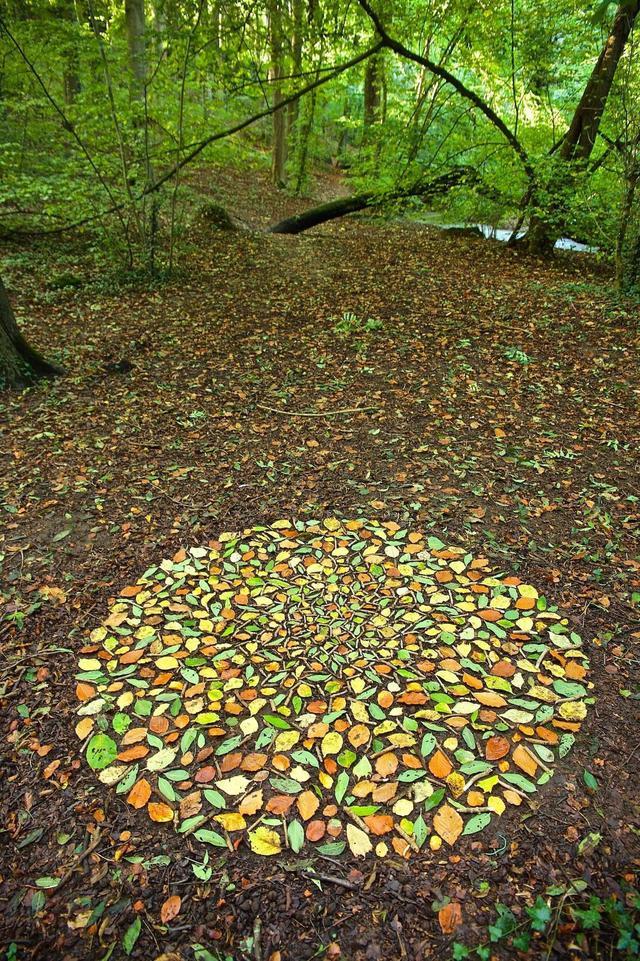 rond-feuilles-automne