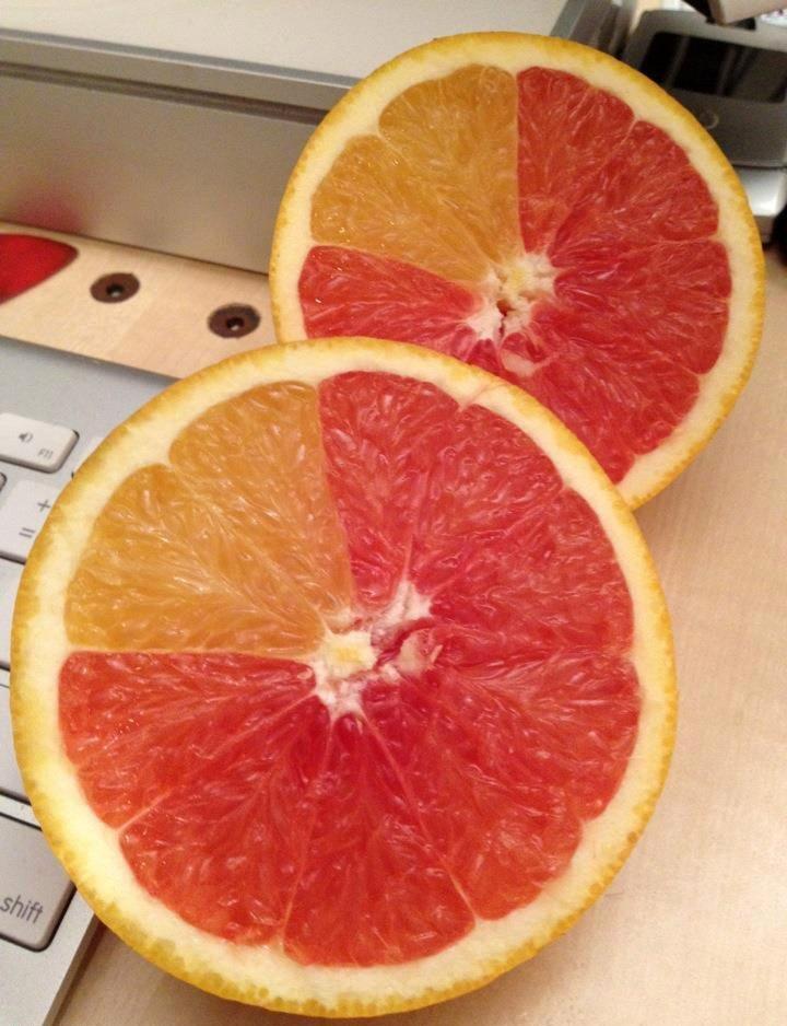 une-orange-pamplemousse