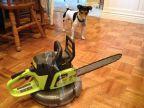 aspirateur-robot-roomba-avec-tronconneuse