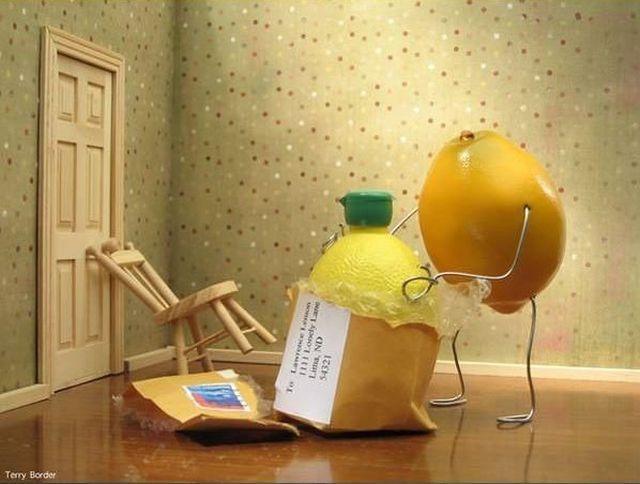 citron-gonflable
