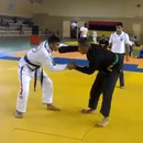 combattant-jiu-jitsu-ko-tout-seul