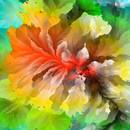 Toutes les couleurs RGB dans une seule image