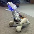 bebe-robot-dinosaure