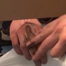 miniature pour Essuyer son caca sur la main des gens