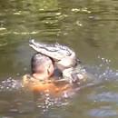 miniature pour Il se baigne avec les crocodiles et les nourrit
