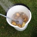 miniature pour Méthode rapide pour éplucher des pommes de terre