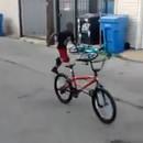 miniature pour Un coup de poing puis s'en va à vélo