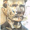 miniature pour Une pile de déchets crée le visage de Ferdinand Cheval