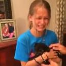miniature pour Une petite fille reçoit un chiot pour son anniversaire