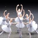 miniature pour Un ballet désynchronisé
