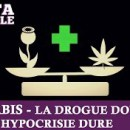 cannabis-drogue-douce-hypocrisie-dure