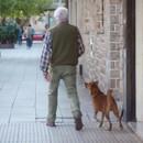 vieil-homme-et-le-chien
