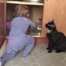 miniature pour Un chat enferme un bébé dans un placard