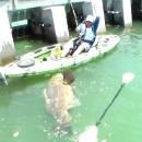 kayak-homme-poisson