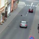 miniature pour Un conducteur de BMW a essayé d'écraser un chat