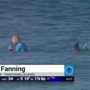 Un requin attaque un surfeur en compétition