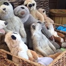 suricate-endormi-peluches